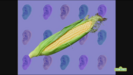 Elmo's World Ears Quiz 5