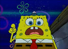 Dolphin Chirps Vocal PE024601 SpongeBob SquarePants