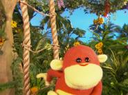 Happy Monkey Day 1