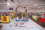 Madagascar WALMART shopping spree 16