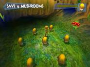 Save4Mushrooms