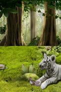 Wonder Pets!Save the Animals!30