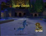 ZoneOstrich