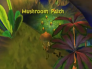 MushroomPatch