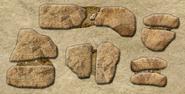 DigforDinosaurs7