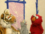 Elmo's World: Cats