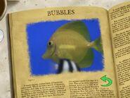 Mr Ray's Encyclopedia 5