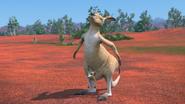 KangarooChristmas99