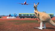 KangarooChristmas87