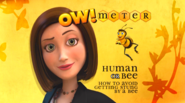 OwMeter1