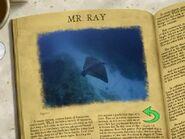 Mr Ray's Encyclopedia 14