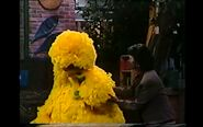 Big Bird sobbing over his birdie pox