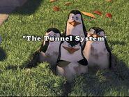 PenguinChat2