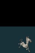 MadagascarKartzDS29
