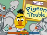 Pigeon Trouble