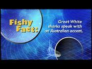Fishy Facts Shark 5