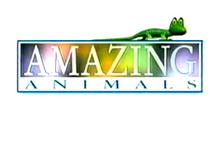 Henry's Amazing Animals Logo