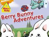 Berry Bunny Adventures 2008 DVD