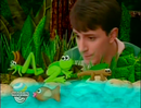 Blue's Clues Sound Ideas, CRICKET - TWO CRICKETS CHIRPING, ANIMAL, INSECT