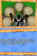 Madagascar DS 172