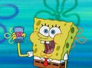 SpongeBob SquarePants Dumped Hollywoodedge, Twangy Boings 7 Type CRT015901