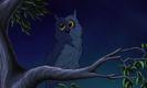 DuckTales the Movie Sound Ideas, BIRD, OWL - SINGLE OWL HOOTING, ANIMAL,