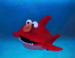 Ewteeth-shark