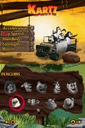 MadagascarKartzDS39
