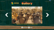 MadagascarKartzGallery39
