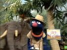 Sesame Street Grover and the Elephant Hollywoodedge, Bird Parrot VariousS PE021301-1