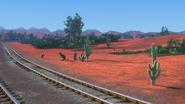 KangarooChristmas66