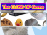 The Close-Up Game/Gallery