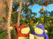 Happy Monkey Day 7