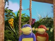 Happy Monkey Day 9