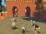 300789-madagascar-windows-screenshot-marty-explores-the-zoo