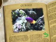 Mr Ray's Encyclopedia 13