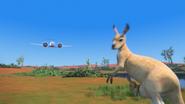 KangarooChristmas82