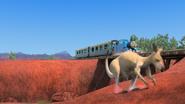 KangarooChristmas49