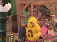 Big Bird mourns over his torn up nest from the hurricane