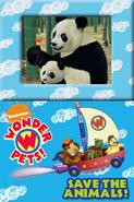 Wonder Pets!Save the Animals!94