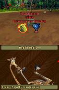 MadagascarKartzDS75