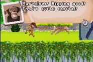 MadagascarOperationPenguin286