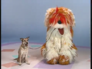 Elmo's World Dogs Quiz 11