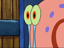 CAT DOMESTIC - SINGLE MEOW, ANIMAL 01 SpongeBob 3