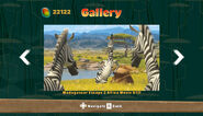 MadagascarKartzGallery41