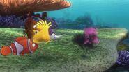 Nemo 0711
