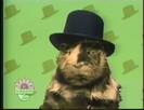 Elmo's World Hats Quiz 5