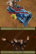 MadagascarKartzDS79