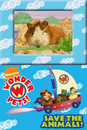 Wonder Pets!Save the Animals!39
