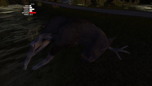 File:Dead moose.jpg